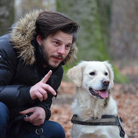 Conoce más sobre el hermoso mundo canino.